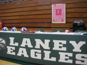 Handmade Quilt Donated to Laney Volleyball for Dig Pink