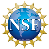 NSF logo low res