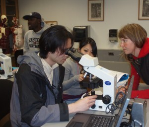 students view cells through a microscope