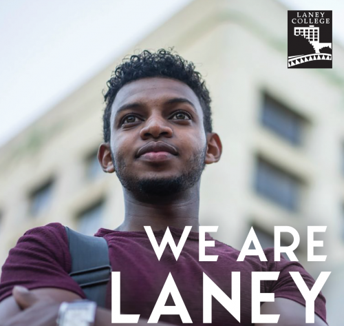 we are laney