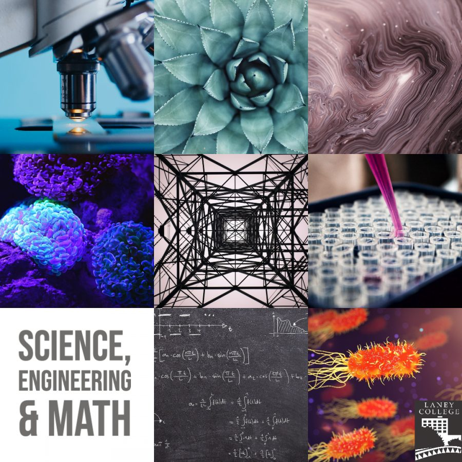 science and math